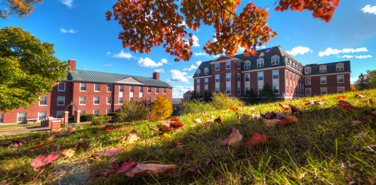 UNB campus in the fall